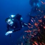 diving-verde-island-puerto-galera (5)