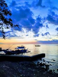 blue-ribbon-dive-resort-anilao-philippines (6)