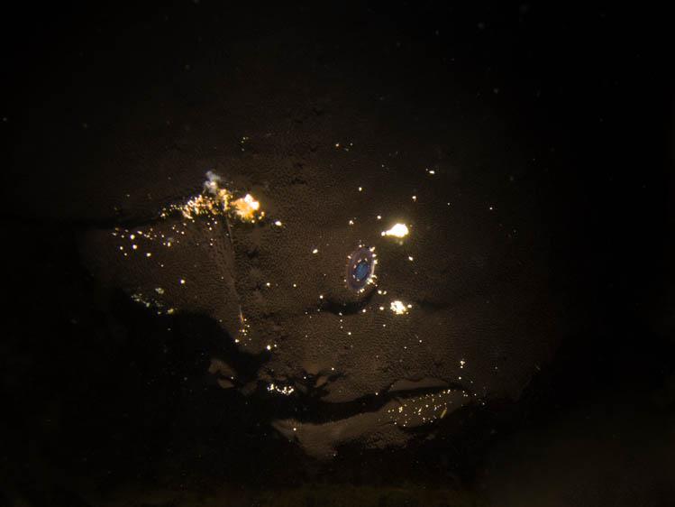 puerto-galera-scuba-diving (8)