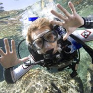 discover scuba philppines padi