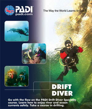 blue ribbon divers puertogalera drift diver