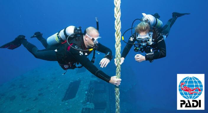 padi multi level diver