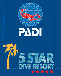 padi five star diving resort puerto galera