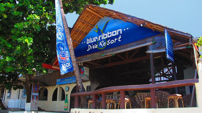 Blue Ribbon Dive Resort tropical shed / pavilion