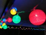 blue-ribbon-dive-resort-christmas-05