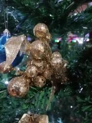 blue-ribbon-dive-resort-christmas-06